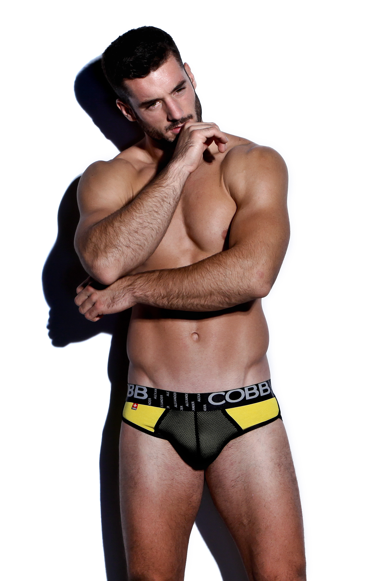 ALEXANDER COBB JEALOUS SLIP BRIEF